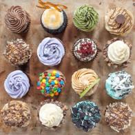 Regular size cupcakes